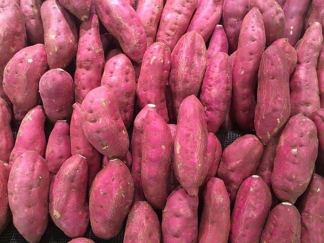 Batatas Patatas Dulces