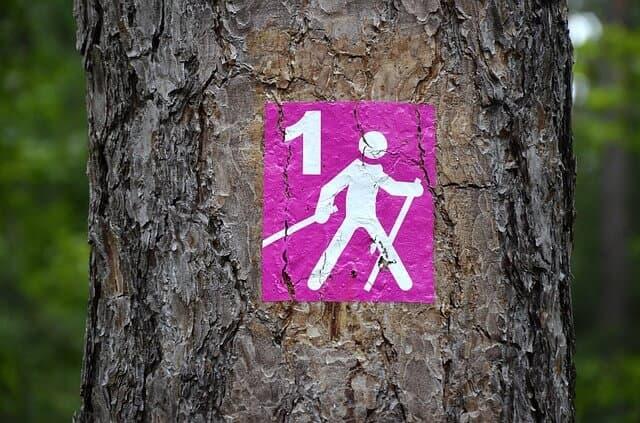 Tipos de senderismo nordic walking